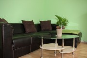 Wohnzimmer (4)